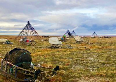 At the beginning of a migration the Nenets women take down the chums...